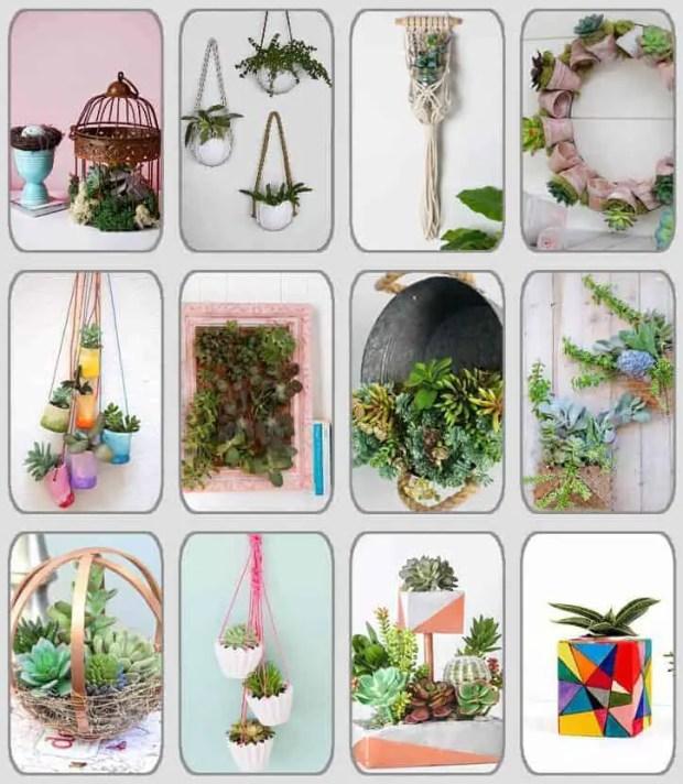 12 DIY con plantas crasas que querrás tener en casa