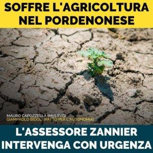 Read more about the article Soffre l'Agricoltura nel Pordenonese: l'assessore Zannier intervenga con urgenza