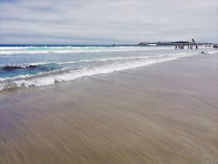 Playa Totoralillo en la mañana.