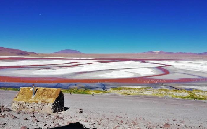 Laguna Colorada, uno de los atractivos del día 1 del tour por Uyuni.