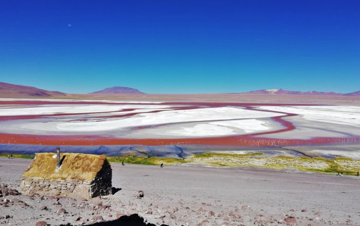 Laguna Colorada, Uyuni.