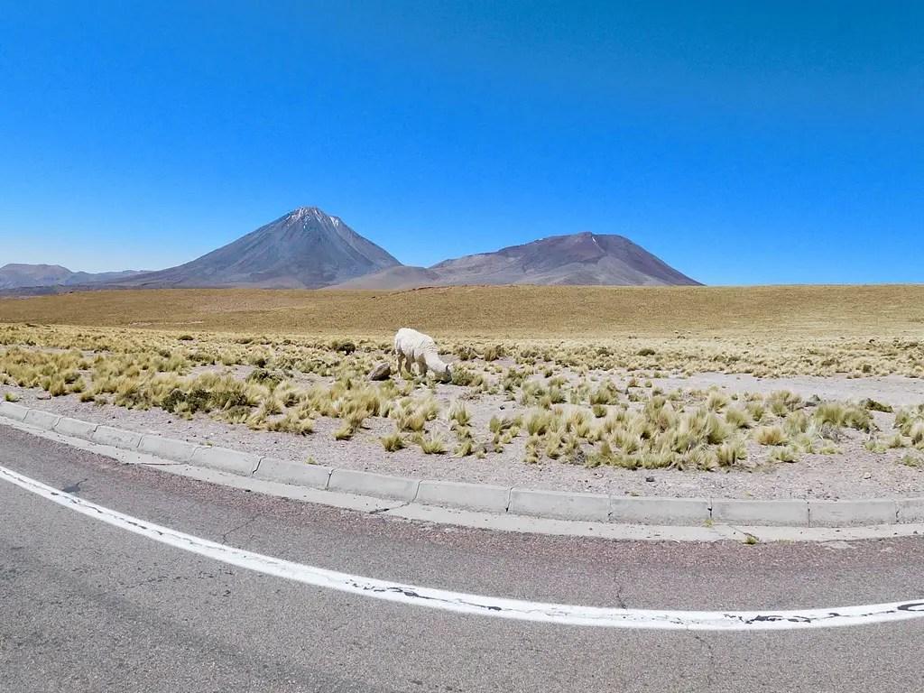 Volcán Licancabur.