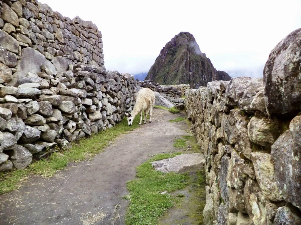 Cómo ir de Uyuni a Machu Picchu.