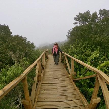 Foto en el Parque Nacional Fray Jorge.
