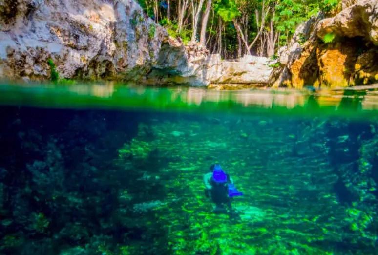 Snorkel en un cenote de Cancún.