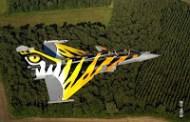 Tiger meet2012: 10 pointus français partent vers le nord