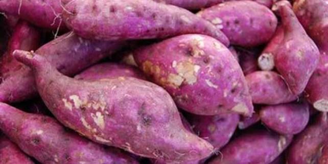 Batata-doce: rica em carotenoides, vitamina C, proteína e potássio.