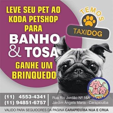 Koda Pet Shop