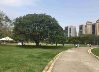 Confira quais parques estaduais estão abertos para visitação em São Paulo