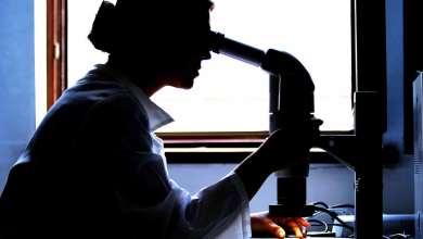 Photo of Cientistas detetam microplásticos em tecidos humanos