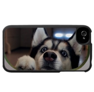 capinha_iphone_cachorro9