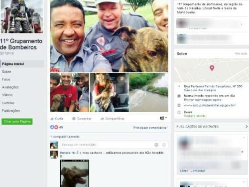 A família encontrou um animal depois que o Corpo de Bombeiros postou uma foto do cão em sua página do Facebook. (Foto: Reprodução / Facebook 11º Grupamento de Bombeiros)
