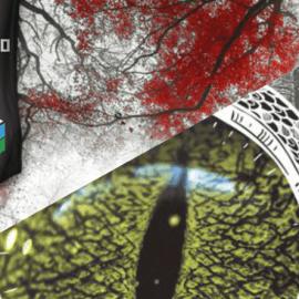 Livros de literatura fantástica ganham espaço na CCXP 2016