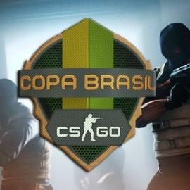 Conheça os finalistas da Copa Brasil de CS:GO