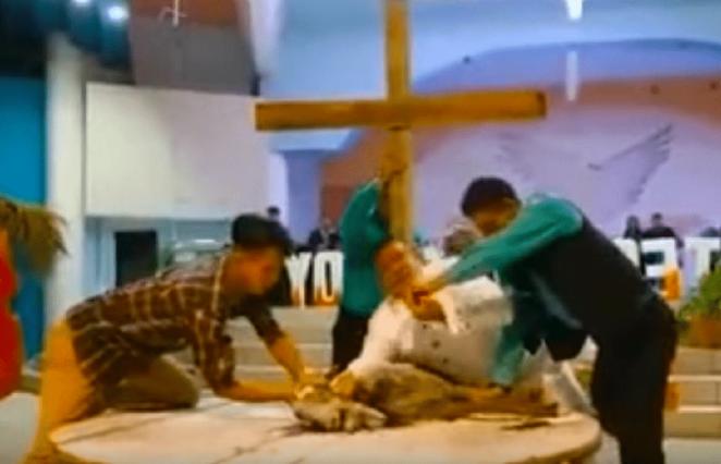 Pastor sacrifica cabra em altar de Igreja.