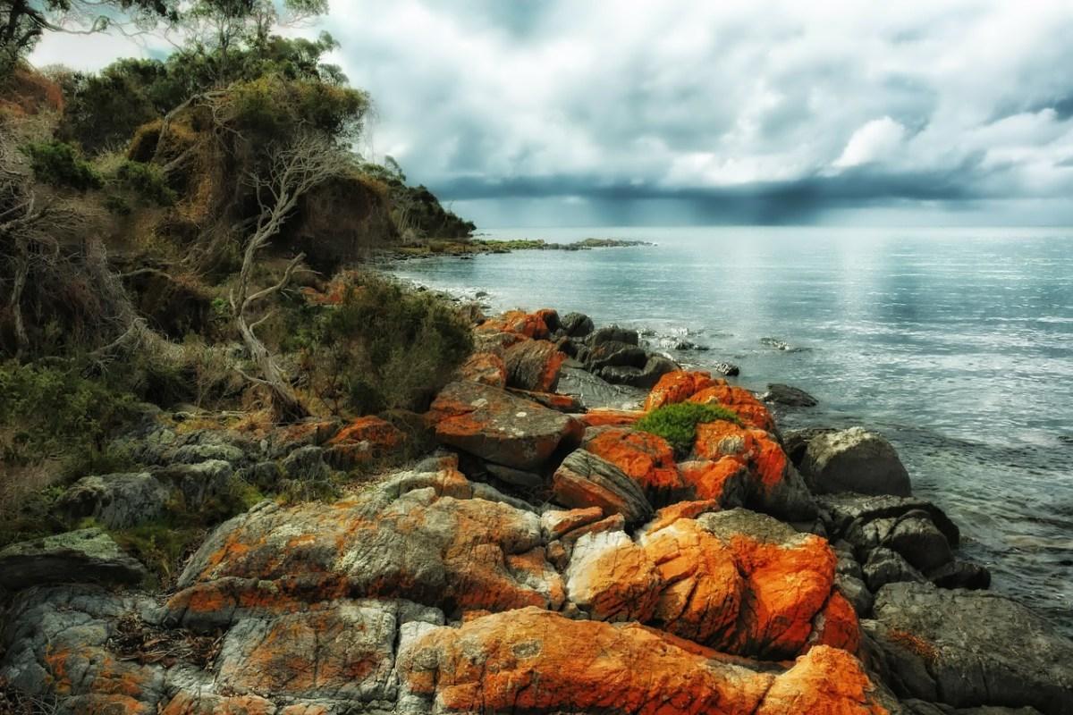 Cosa vedere in Tasmania: sport, sapori e arte