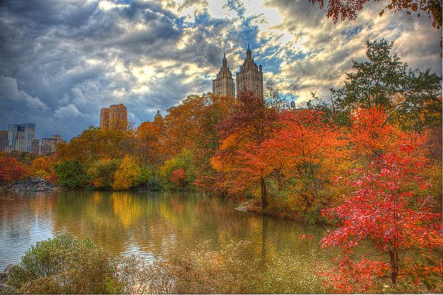 visitare New York a novembre