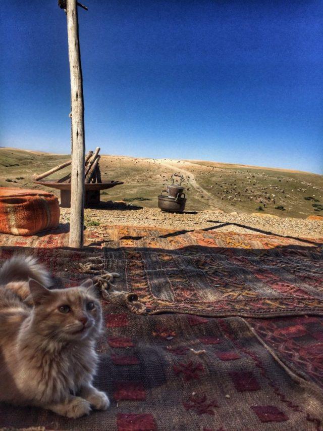 dormire nel deserto a Marrakech
