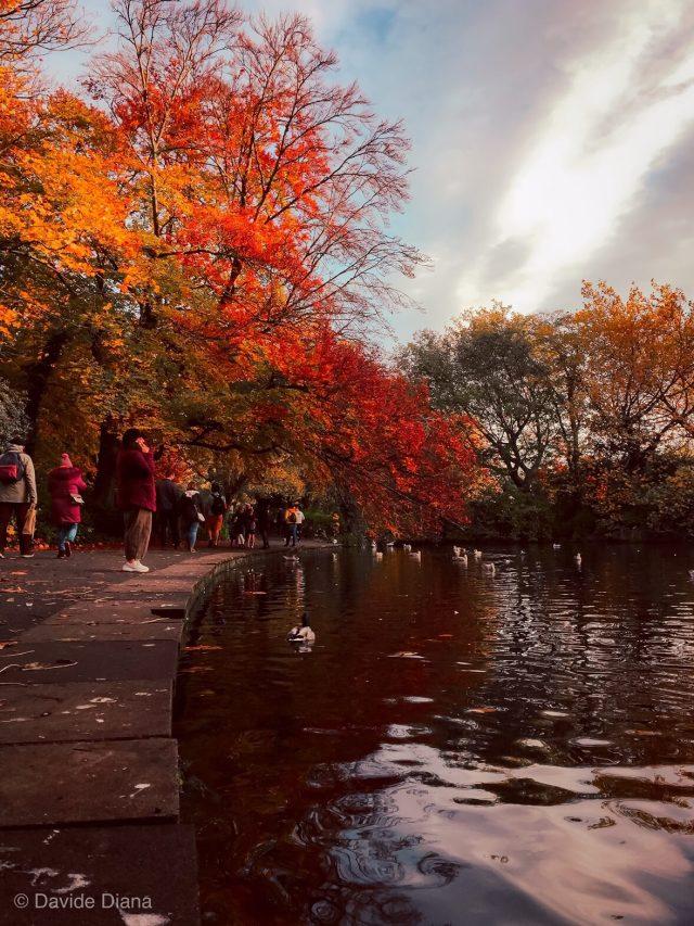 i parchi di Dublino