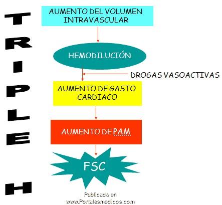 manejo_anestesico_cirugia_aneurisma/triple_H_aneurismas