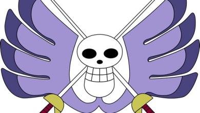Foto de One Piece   O que aconteceu com os outros agentes da Baroque Works? (Histórias de Capa)