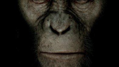 Foto de Planeta dos Macacos: A Origem – Eu fui! [Cinema]