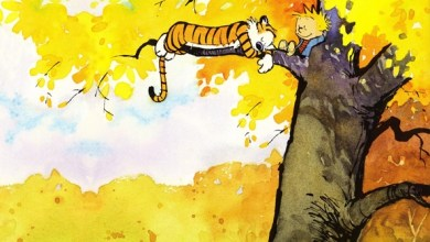 Foto de Wallpaper de ontem: Calvin and Hobbes!