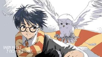 Foto de Seria possível um universo expandido de Harry Potter?