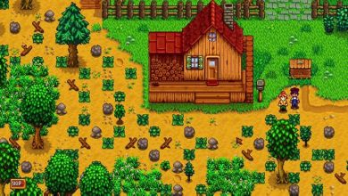Photo of Minipost | Primeiros dias no campo em Stardew Valley