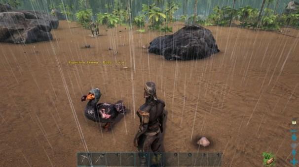 ARK Survival Evolved 006