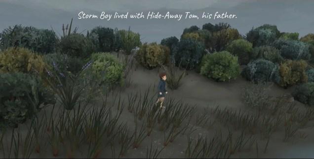 Storm Boy Game beach-storm