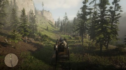 Red Dead Redemption 2 (35)