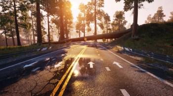 Dangerous Driving - Lake_Sunset