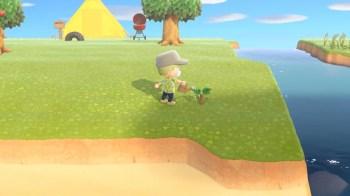 Animal Crossing New Horizons - 51
