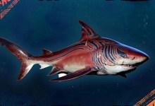 Photo of Adaptação do Tubarão-Tigre chega gratuitamente aos jogadores de Maneater