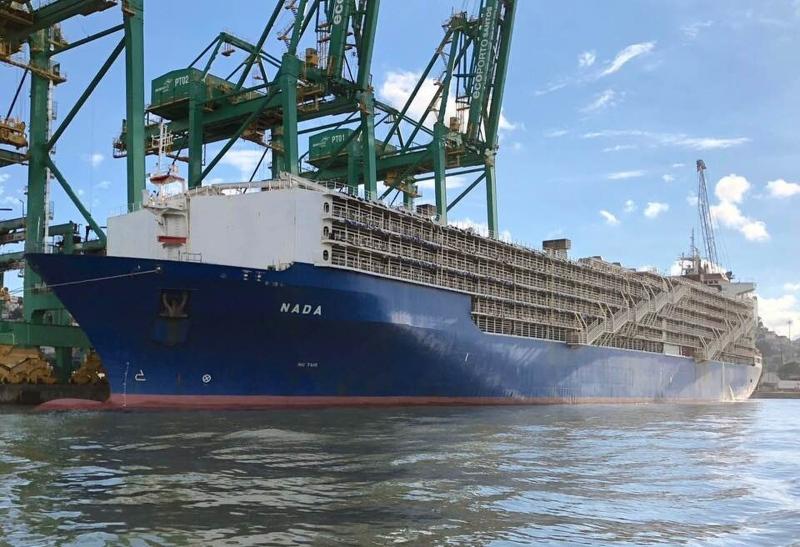 Artigo - O Embarque de Cargas Vivas no Porto de Santos