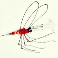 Vacina da Febre Amarela - Quais os Eventos Adversos?