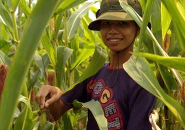 Água e latrinas melhoram a vida no Vietnã