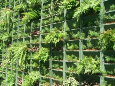 Jardins verticais em muros de SP