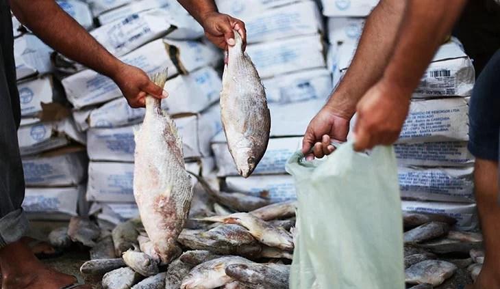 Pescados contaminados