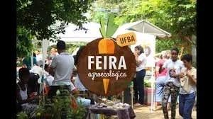Feira Agroecológica da UFBA