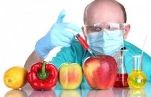 GMO-sm1-810x523
