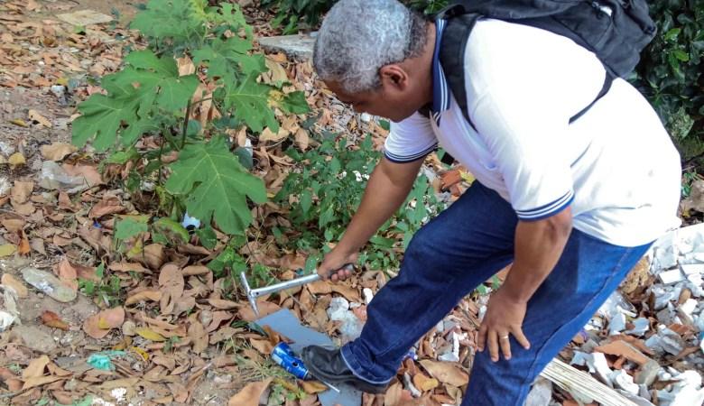 Salvador recebe Dia D de combate ao Aedes aegypti nesta sexta (30)