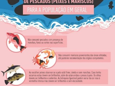 Orientações sobre o consumo de pescados (mariscos e peixes)