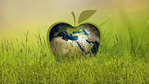 Ecologia Integral, ecossistemas esféricos, o novo mundo à porta