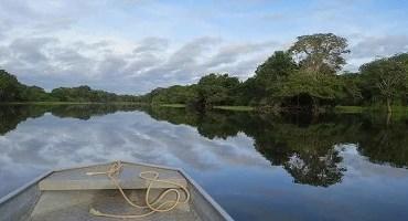 Plano de ação para Amazônia Central