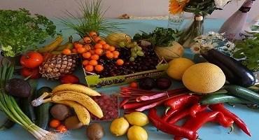Cientistas internacionais defendem Guia Alimentar brasileiro