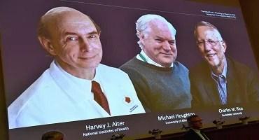 Nobel de Medicina é de cientistas que pesquisaram vírus da Hepatite C