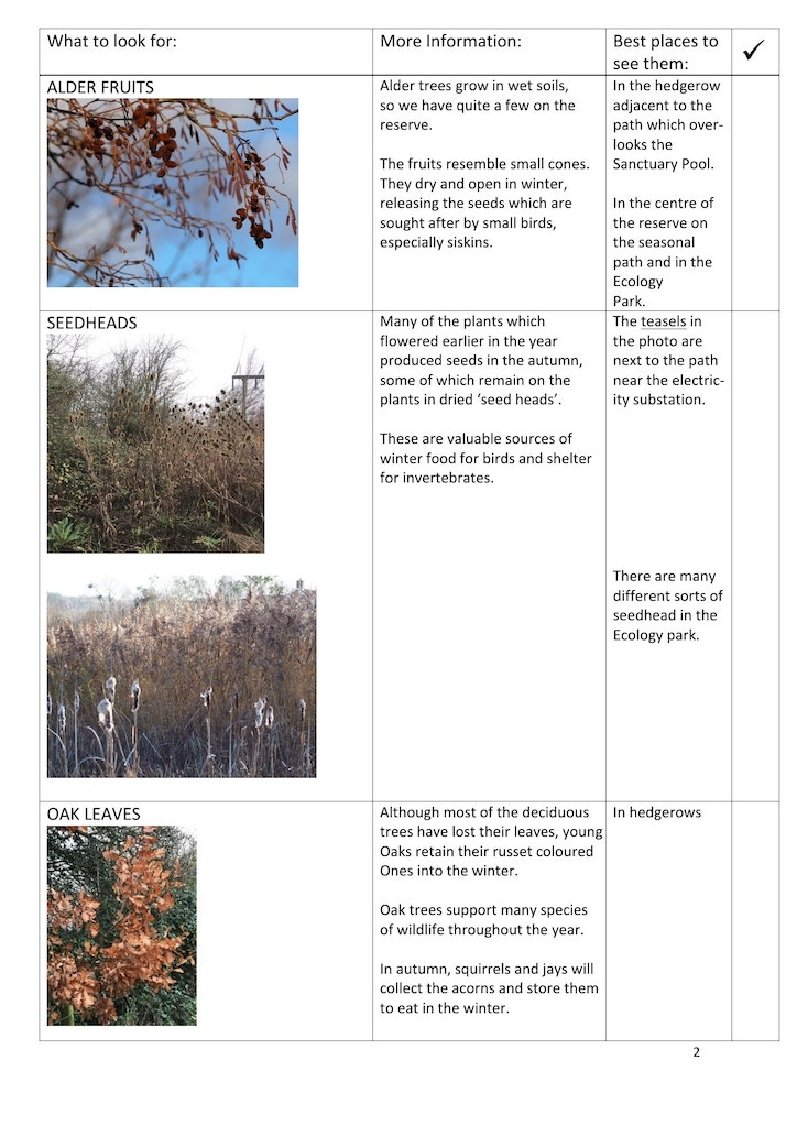Winter trail page 2