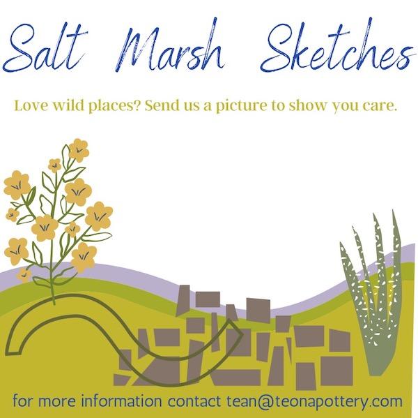 Call for Salt Marsh Art